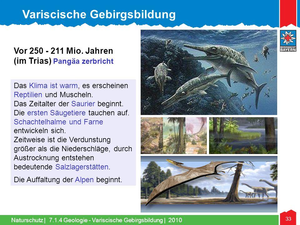 Naturschutz | 33 Das Klima ist warm, es erscheinen Reptilien und Muscheln. Das Zeitalter der Saurier beginnt. Die ersten Säugetiere tauchen auf. Schac