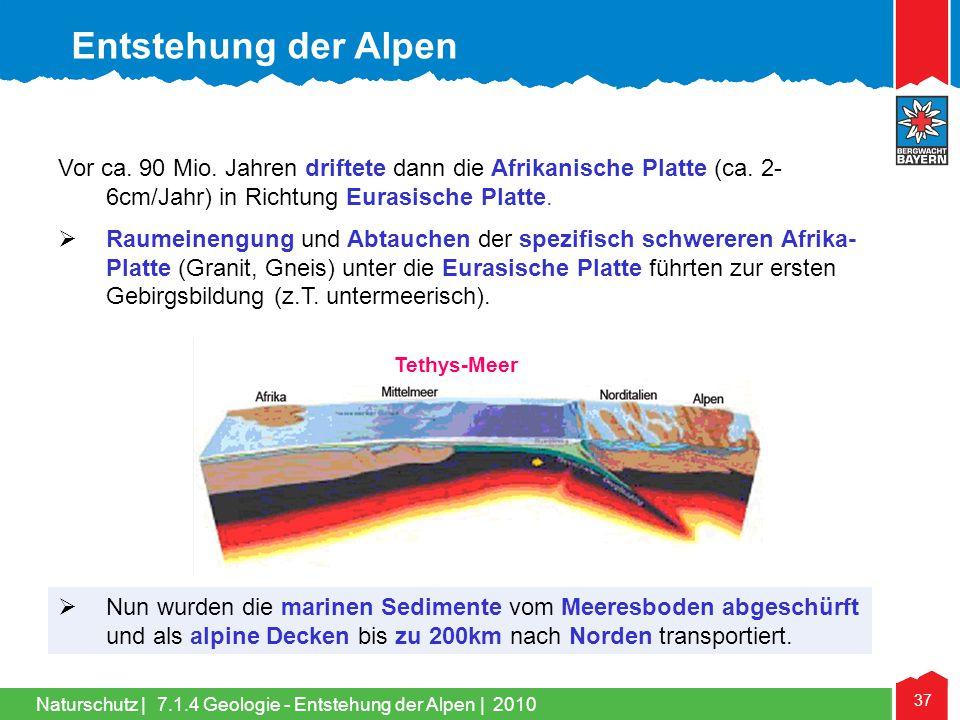 Naturschutz   37 Vor ca. 90 Mio. Jahren driftete dann die Afrikanische Platte (ca. 2- 6cm/Jahr) in Richtung Eurasische Platte.  Raumeinengung und Abt