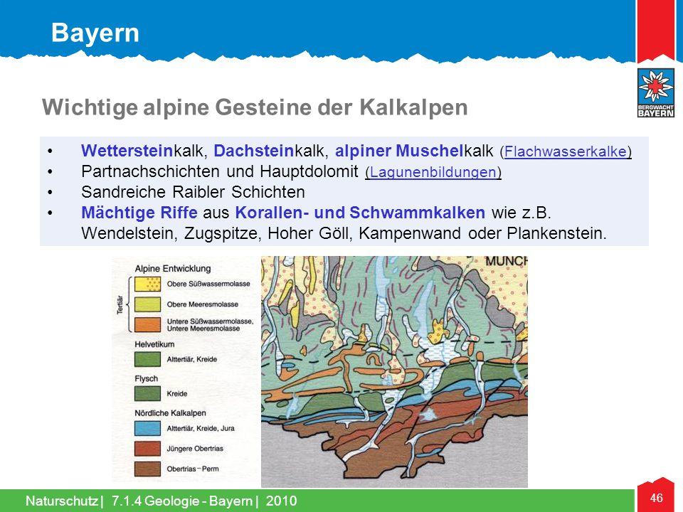 Naturschutz | 46 •Wettersteinkalk, Dachsteinkalk, alpiner Muschelkalk (Flachwasserkalke) •Partnachschichten und Hauptdolomit (Lagunenbildungen) •Sandr