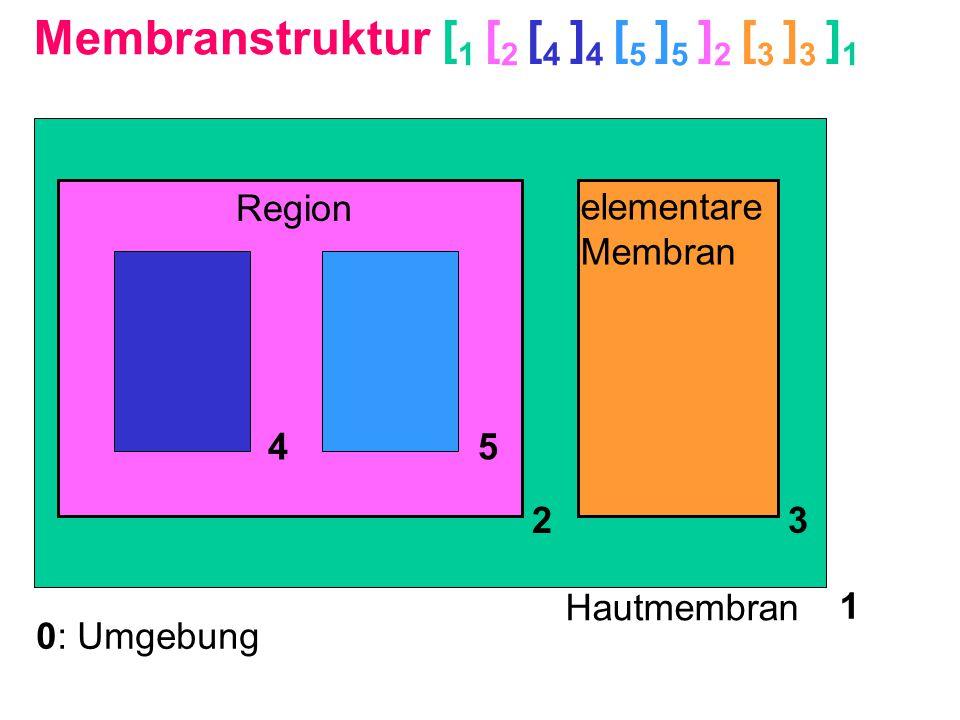 1 23 45 Hautmembran elementare Membran Region Membranstruktur [ 1 [ 2 [ 4 ] 4 [ 5 ] 5 ] 2 [ 3 ] 3 ] 1 0: Umgebung