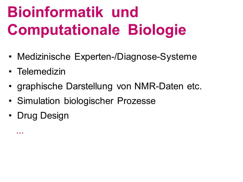 • Medizinische Experten-/Diagnose-Systeme • Telemedizin • graphische Darstellung von NMR-Daten etc. • Simulation biologischer Prozesse • Drug Design..