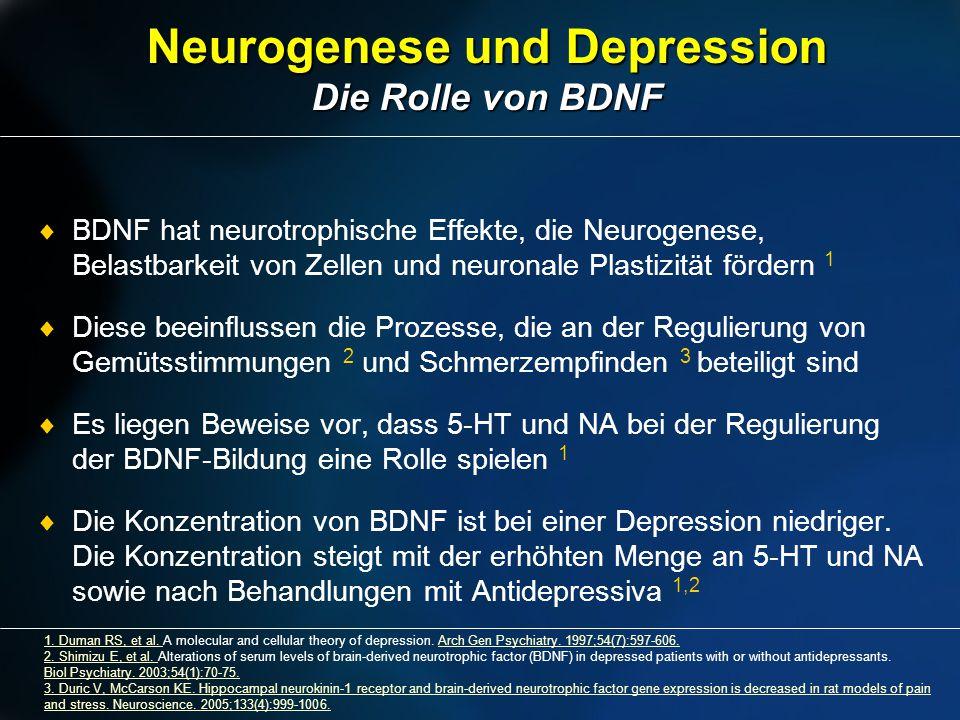2010-08-26-Obach Neurogenese und Depression Die Rolle von BDNF 1. Duman RS, et al. 1. Duman RS, et al. A molecular and cellular theory of depression.
