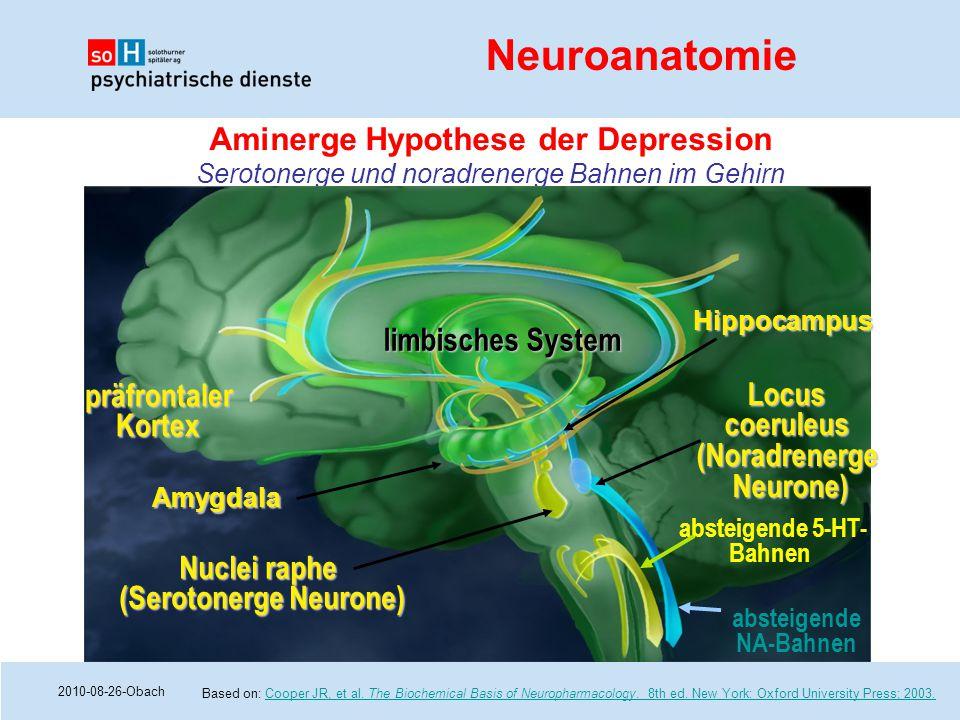 2010-08-26-Obach Aminerge Hypothese der Depression Serotonerge und noradrenerge Bahnen im Gehirn Based on: Cooper JR, et al. The Biochemical Basis of