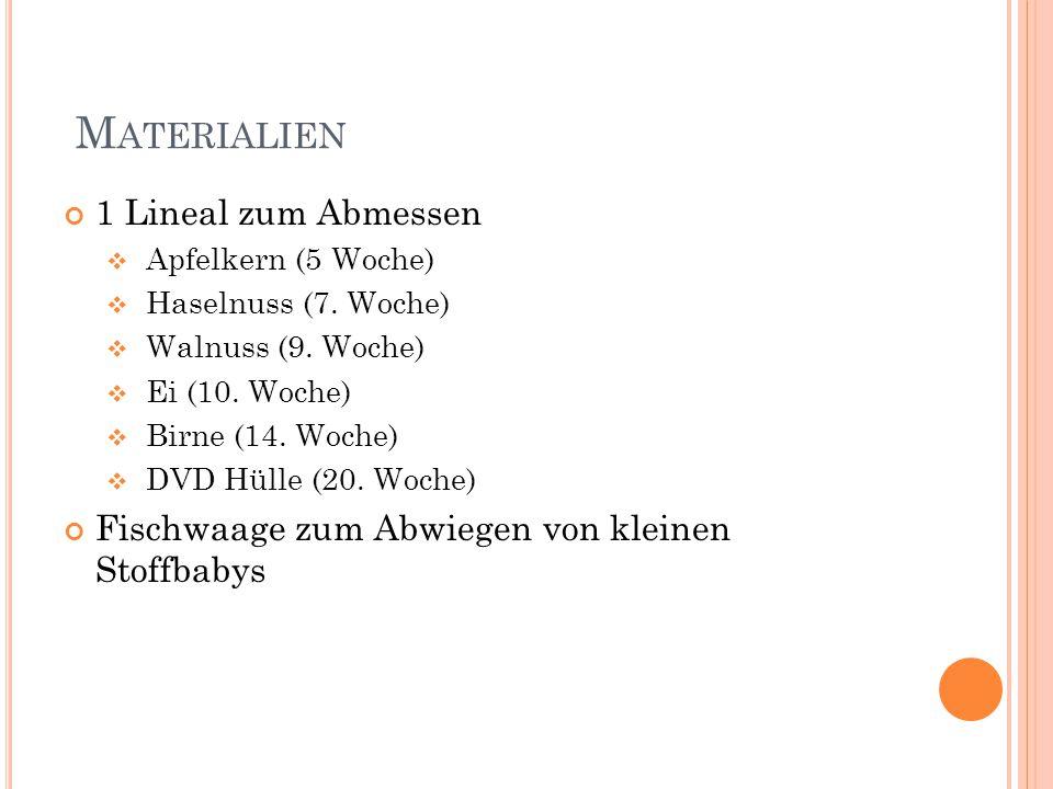 M ATERIALIEN 1 Lineal zum Abmessen  Apfelkern (5 Woche)  Haselnuss (7. Woche)  Walnuss (9. Woche)  Ei (10. Woche)  Birne (14. Woche)  DVD Hülle