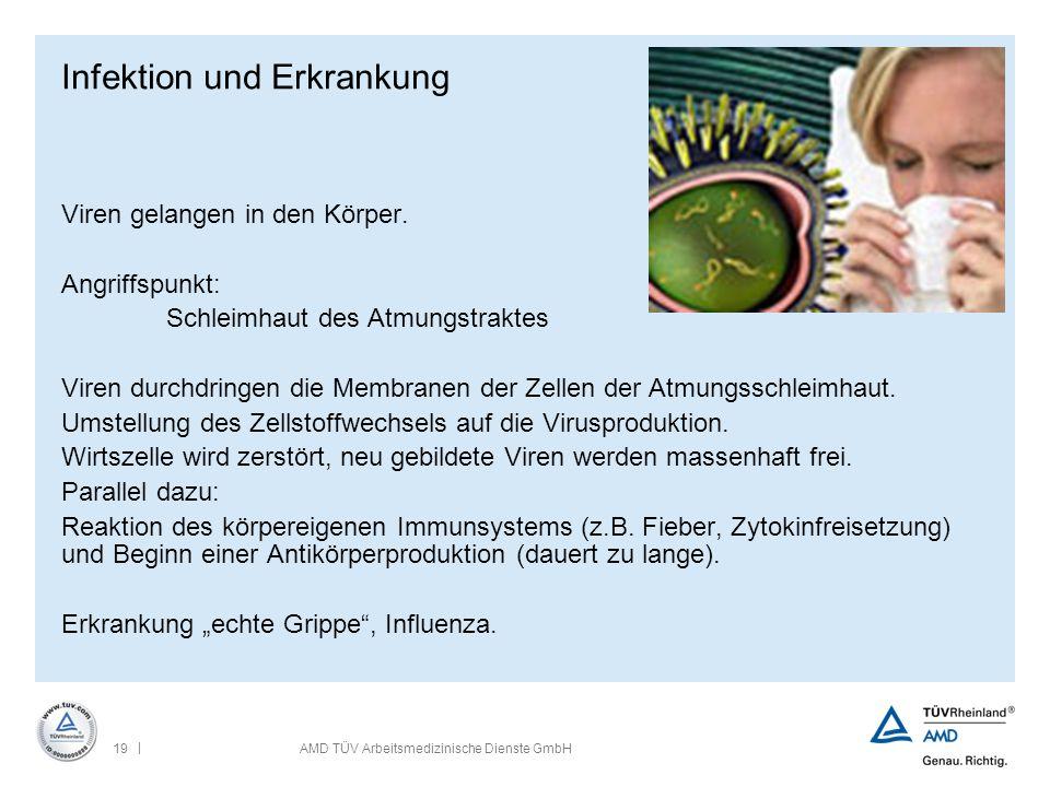 | 19AMD TÜV Arbeitsmedizinische Dienste GmbH Infektion und Erkrankung Viren gelangen in den Körper. Angriffspunkt: Schleimhaut des Atmungstraktes Vire