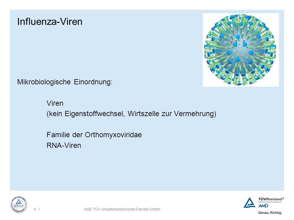 | 4AMD TÜV Arbeitsmedizinische Dienste GmbH Influenza-Viren Mikrobiologische Einordnung: Viren (kein Eigenstoffwechsel, Wirtszelle zur Vermehrung) Fam