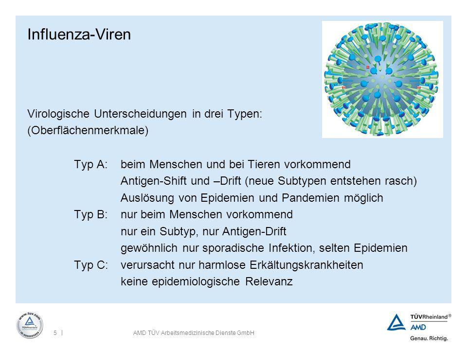 | 5AMD TÜV Arbeitsmedizinische Dienste GmbH Influenza-Viren Virologische Unterscheidungen in drei Typen: (Oberflächenmerkmale) Typ A:beim Menschen und