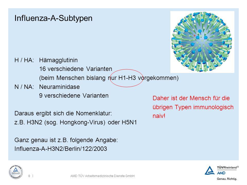 | 8AMD TÜV Arbeitsmedizinische Dienste GmbH Influenza-A-Subtypen H / HA:Hämagglutinin 16 verschiedene Varianten (beim Menschen bislang nur H1-H3 vorge