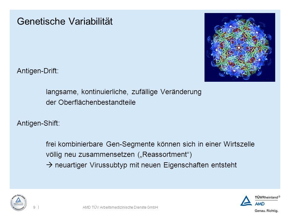 | 9AMD TÜV Arbeitsmedizinische Dienste GmbH Genetische Variabilität Antigen-Drift: langsame, kontinuierliche, zufällige Veränderung der Oberflächenbes