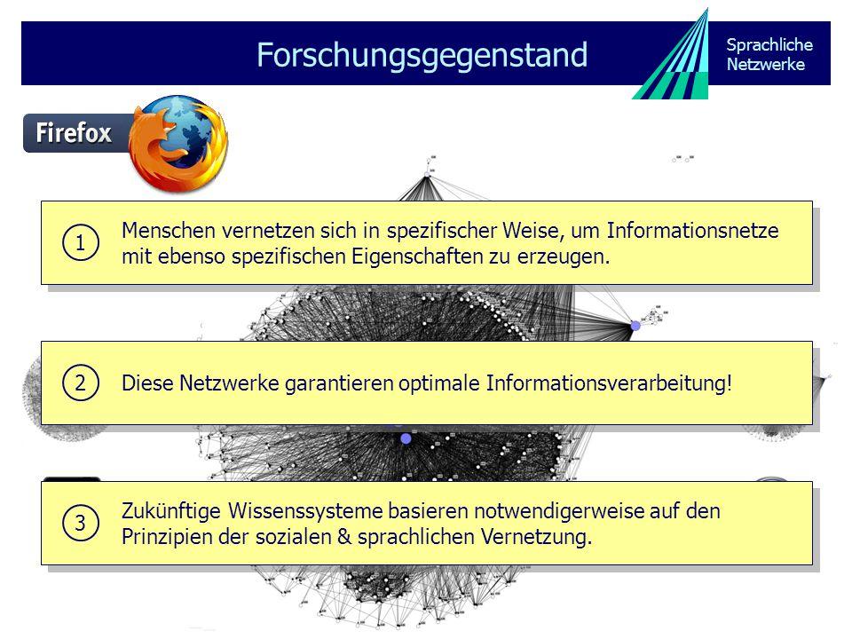 Sprachliche Netzwerke Forschungsgegenstand sprachliche Netzwerke Lexikon (Terminologie) & Grammatik Dokumentnetzwerk soziales Netzwerk ManifestationKonstitution