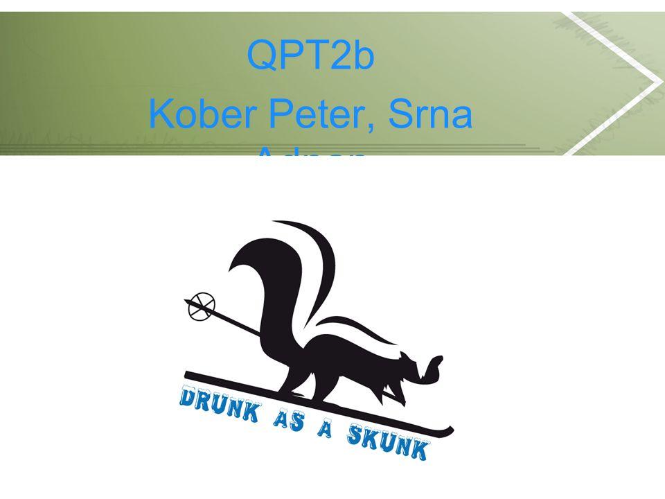 QPT2b Kober Peter, Srna Adnan