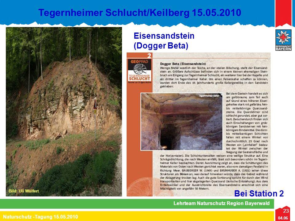 23 04.06 Naturschutz -Tagung 15.05.2010 Lehrteam Naturschutz Region Bayerwald Tegernheimer Schlucht/Keilberg 15.05.2010 23 Bei Station 2 Eisensandstei