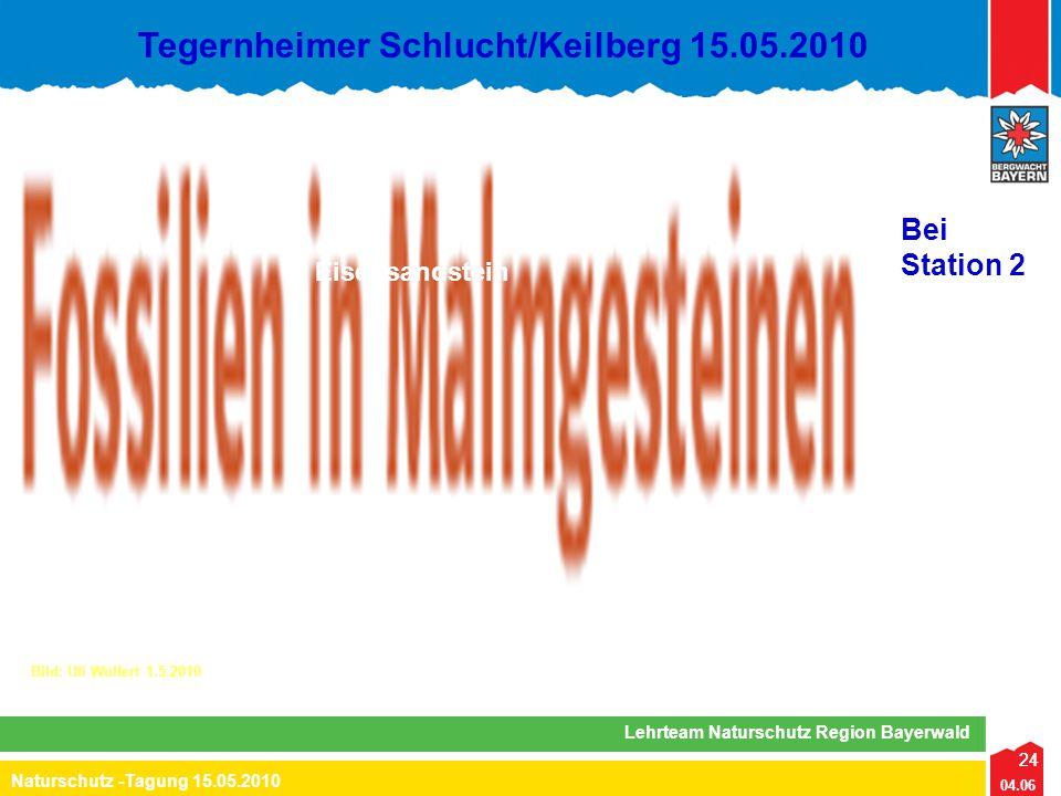 24 04.06 Naturschutz -Tagung 15.05.2010 Lehrteam Naturschutz Region Bayerwald Tegernheimer Schlucht/Keilberg 15.05.2010 24 Eisensandstein Bei Station