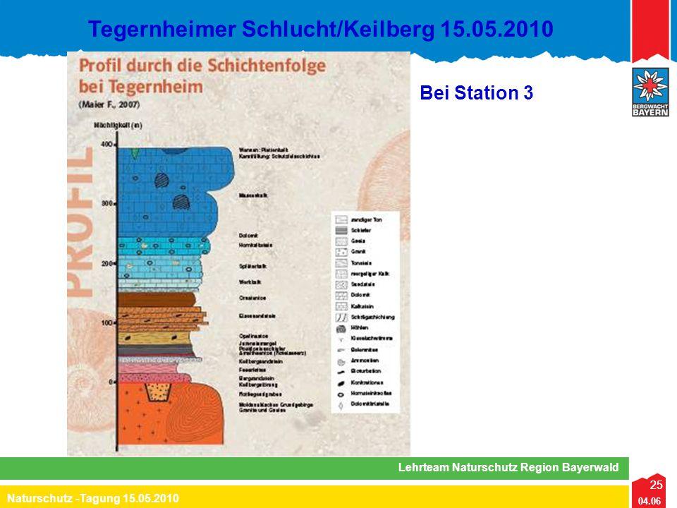 25 04.06 Naturschutz -Tagung 15.05.2010 Lehrteam Naturschutz Region Bayerwald Tegernheimer Schlucht/Keilberg 15.05.2010 25 Bei Station 3