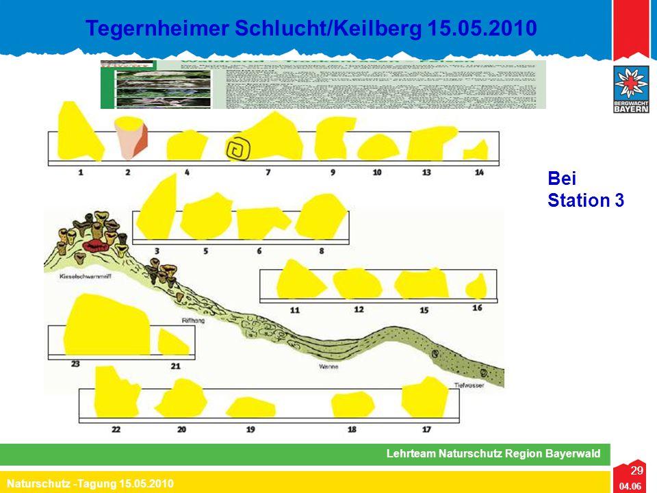 29 04.06 Naturschutz -Tagung 15.05.2010 Lehrteam Naturschutz Region Bayerwald Tegernheimer Schlucht/Keilberg 15.05.2010 29 Bei Station 3