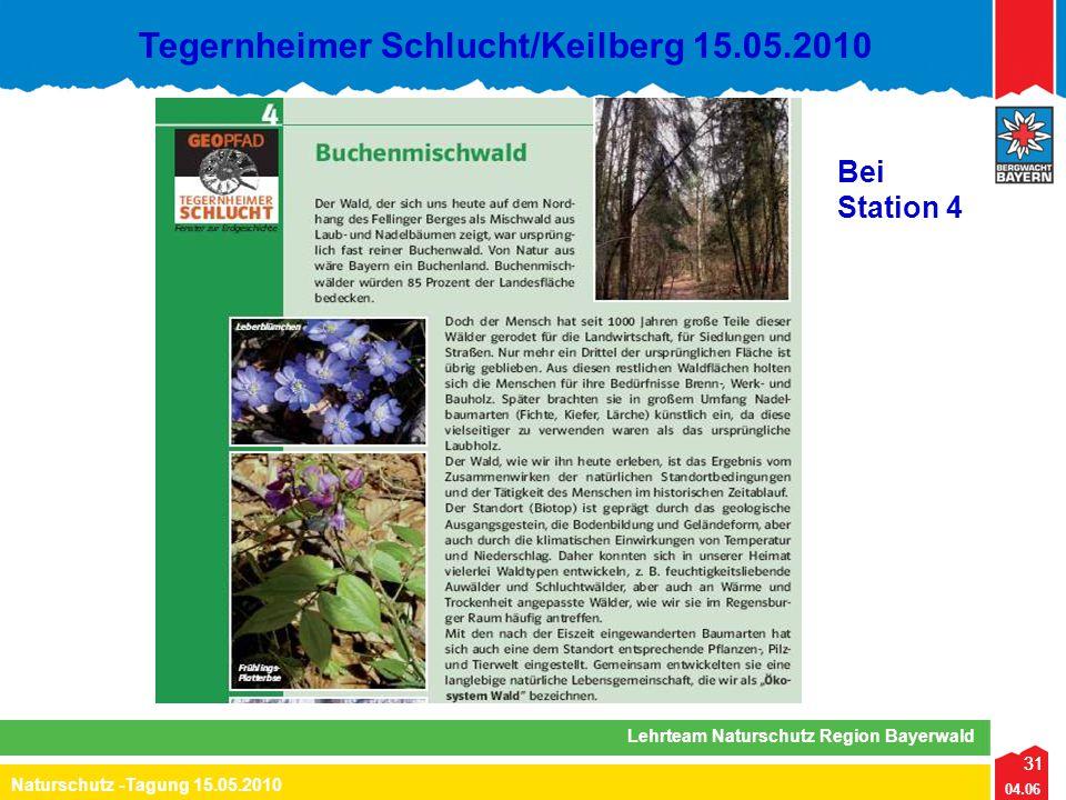 31 04.06 Naturschutz -Tagung 15.05.2010 Lehrteam Naturschutz Region Bayerwald Tegernheimer Schlucht/Keilberg 15.05.2010 31 Bei Station 4