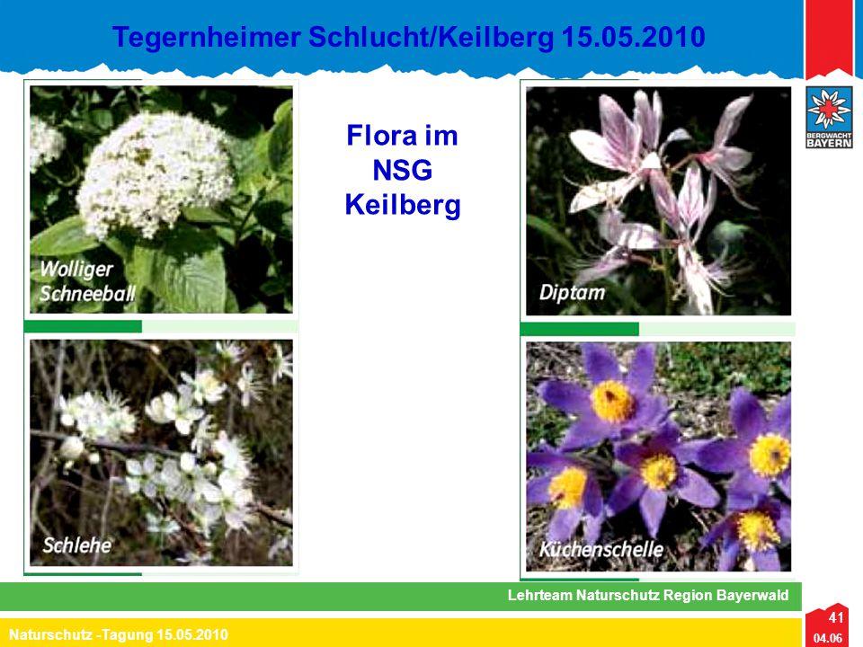 41 04.06 Naturschutz -Tagung 15.05.2010 Lehrteam Naturschutz Region Bayerwald Tegernheimer Schlucht/Keilberg 15.05.2010 41 Flora im NSG Keilberg