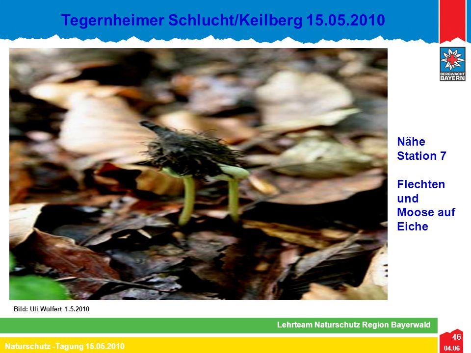 46 04.06 Naturschutz -Tagung 15.05.2010 Lehrteam Naturschutz Region Bayerwald Tegernheimer Schlucht/Keilberg 15.05.2010 46 Bild: Uli Wülfert 1.5.2010