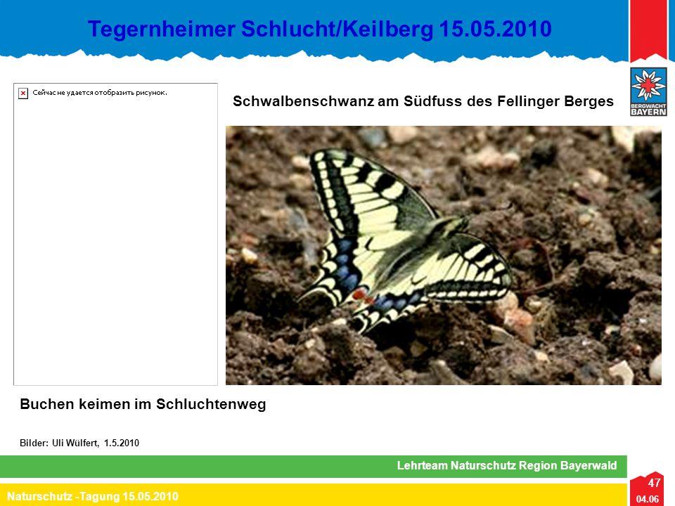 47 04.06 Naturschutz -Tagung 15.05.2010 Lehrteam Naturschutz Region Bayerwald Tegernheimer Schlucht/Keilberg 15.05.2010 47 Bilder: Uli Wülfert, 1.5.20