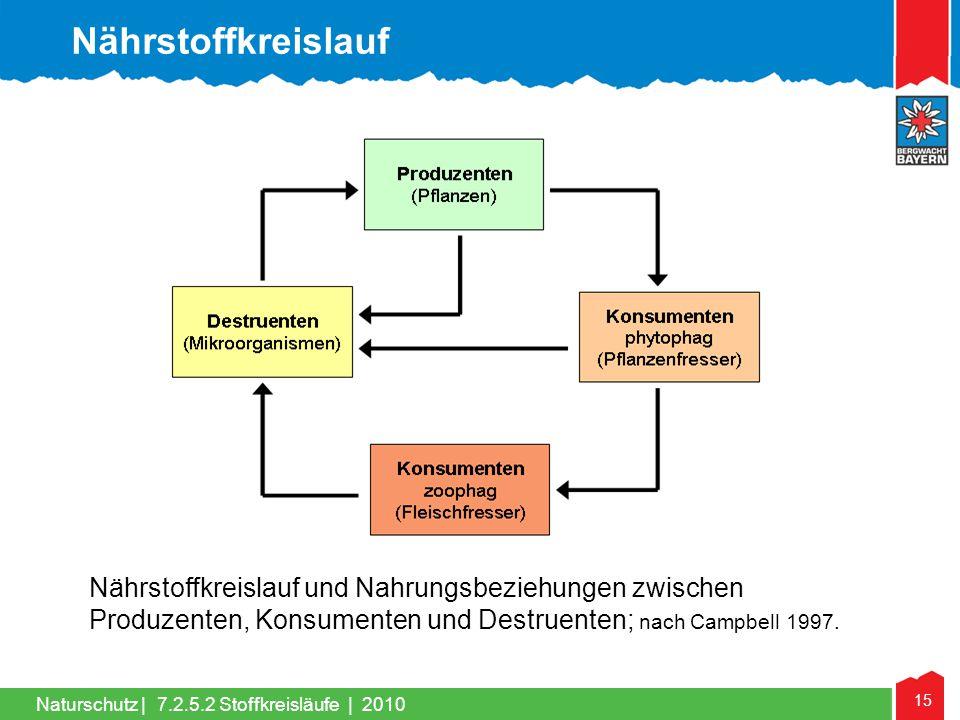 15 Naturschutz | Nährstoffkreislauf und Nahrungsbeziehungen zwischen Produzenten, Konsumenten und Destruenten; nach Campbell 1997. Nährstoffkreislauf