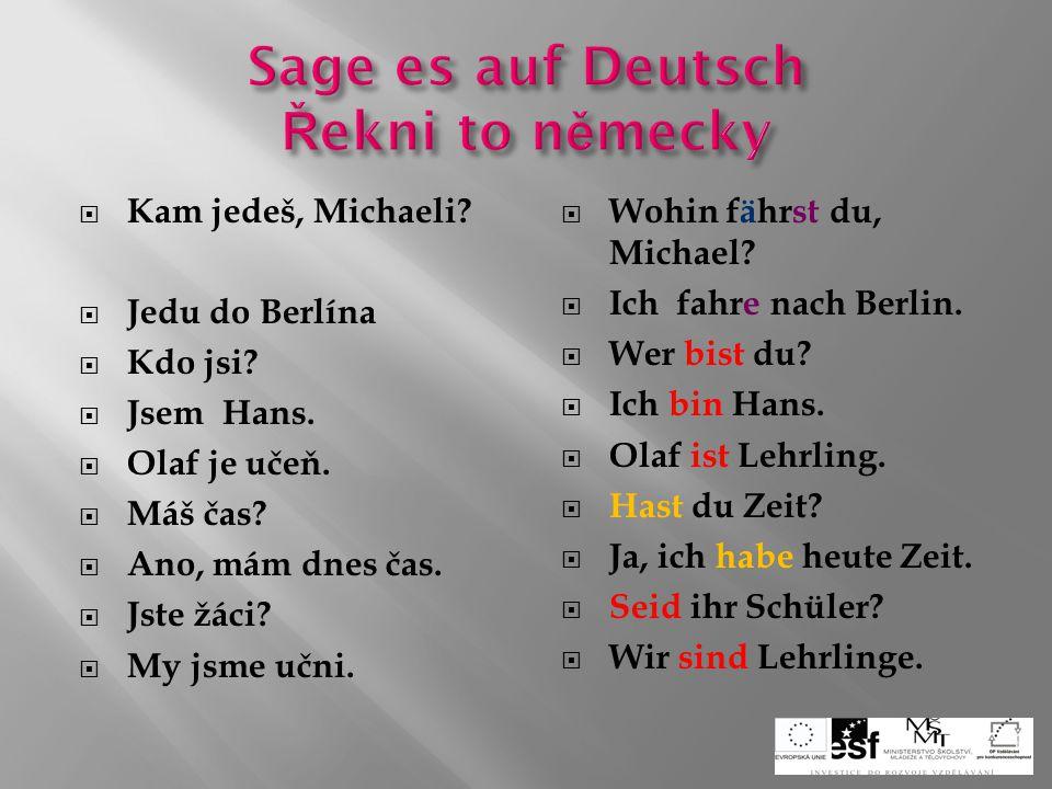  Jak mluvíš?  Mluvím německy a česky.  Uwe čte nějakou knihu.  Vidíš Ulriku?  Ano, vidím Ulriku i Petru.  Spíš?  Ne, nespím.  Was sprichst du?