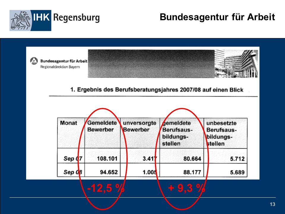 13 Bundesagentur für Arbeit -12,5 % + 9,3 % -