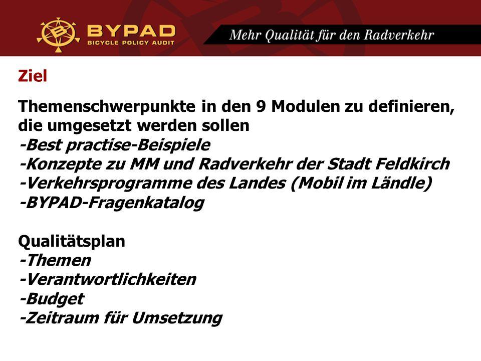Ziel Themenschwerpunkte in den 9 Modulen zu definieren, die umgesetzt werden sollen -Best practise-Beispiele -Konzepte zu MM und Radverkehr der Stadt Feldkirch -Verkehrsprogramme des Landes (Mobil im Ländle) -BYPAD-Fragenkatalog Qualitätsplan -Themen -Verantwortlichkeiten -Budget -Zeitraum für Umsetzung