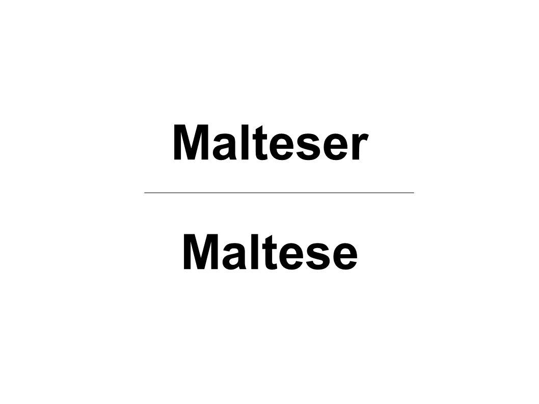 Malteser Maltese