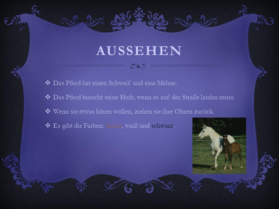 AUSSEHEN  Das Pferd hat einen Schweif und eine Mähne.  Das Pferd braucht seine Hufe, wenn es auf der Straße laufen muss.  Wenn sie etwas hören woll