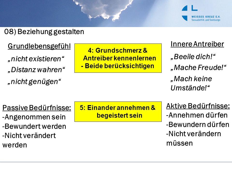 """08) Beziehung gestalten 4: Grundschmerz & Antreiber kennenlernen - Beide berücksichtigen 5: Einander annehmen & begeistert sein Grundlebensgefühl """"nic"""