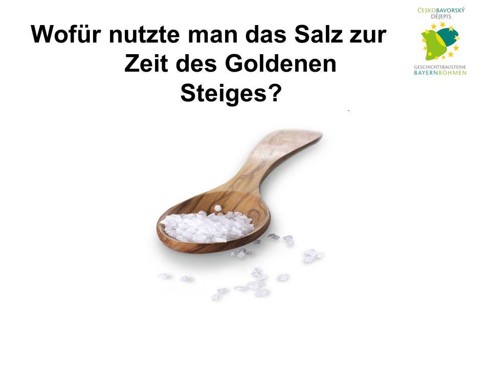 Wofür nutzte man das Salz zur Zeit des Goldenen Steiges