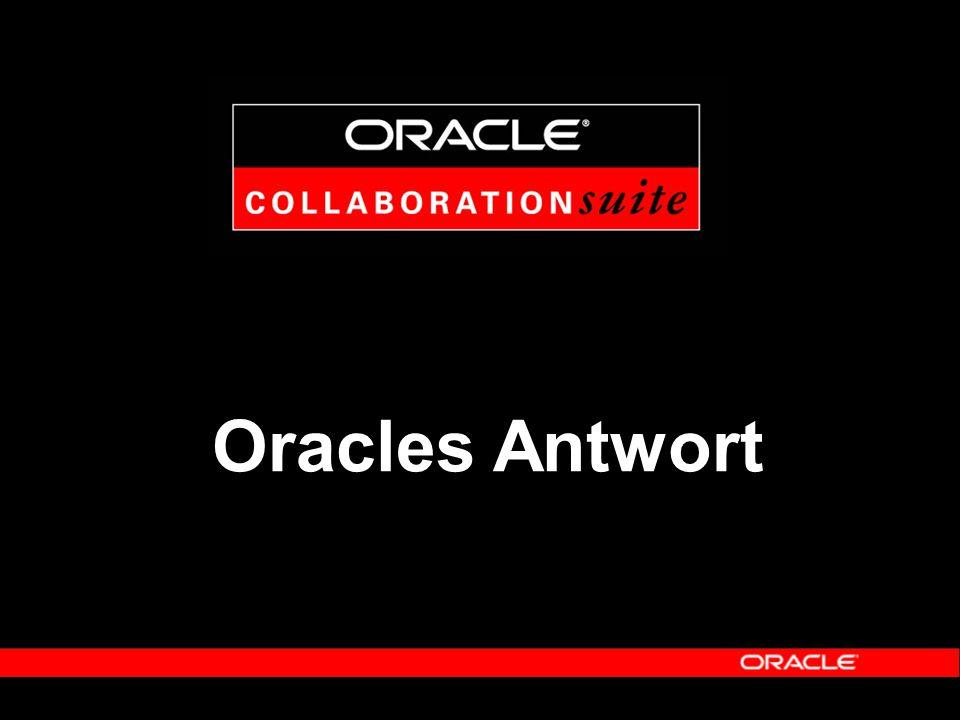 Oracle als Fallstudie