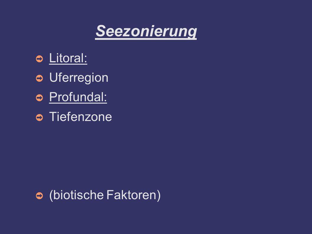 ➲ Litoral: ➲ Uferregion ➲ Profundal: ➲ Tiefenzone ➲ (biotische Faktoren) Seezonierung