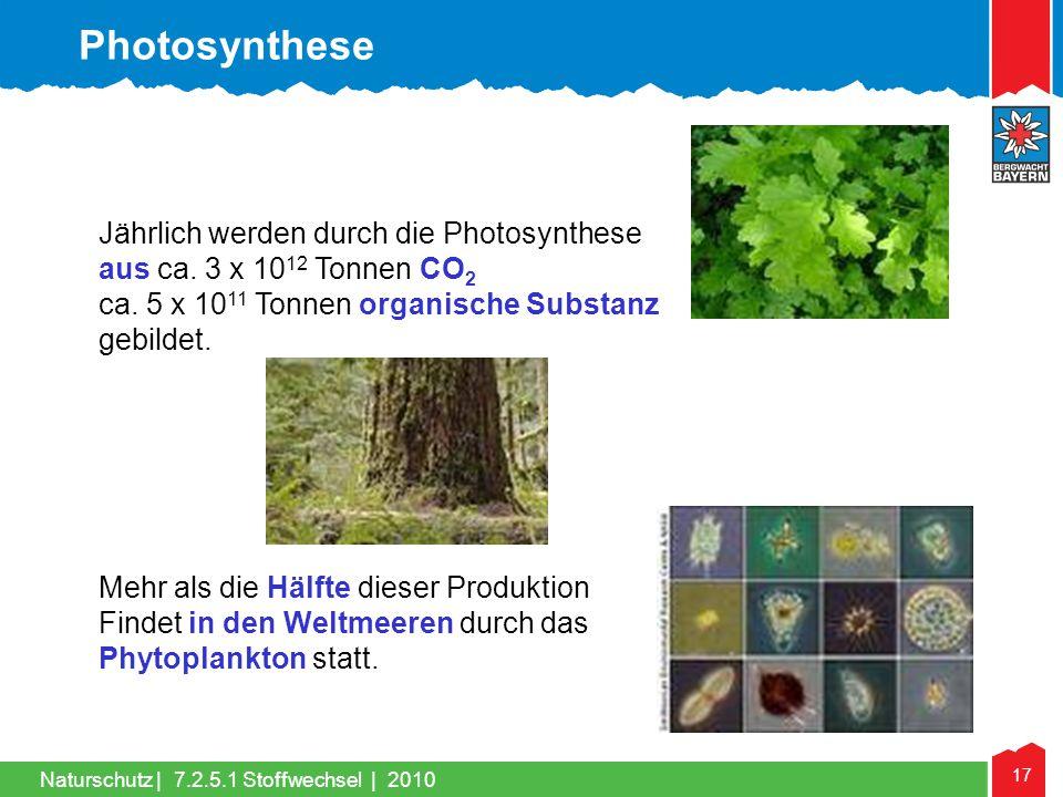 17 Naturschutz |7.2.5.1 Stoffwechsel | 2010 Jährlich werden durch die Photosynthese aus ca. 3 x 10 12 Tonnen CO 2 ca. 5 x 10 11 Tonnen organische Subs