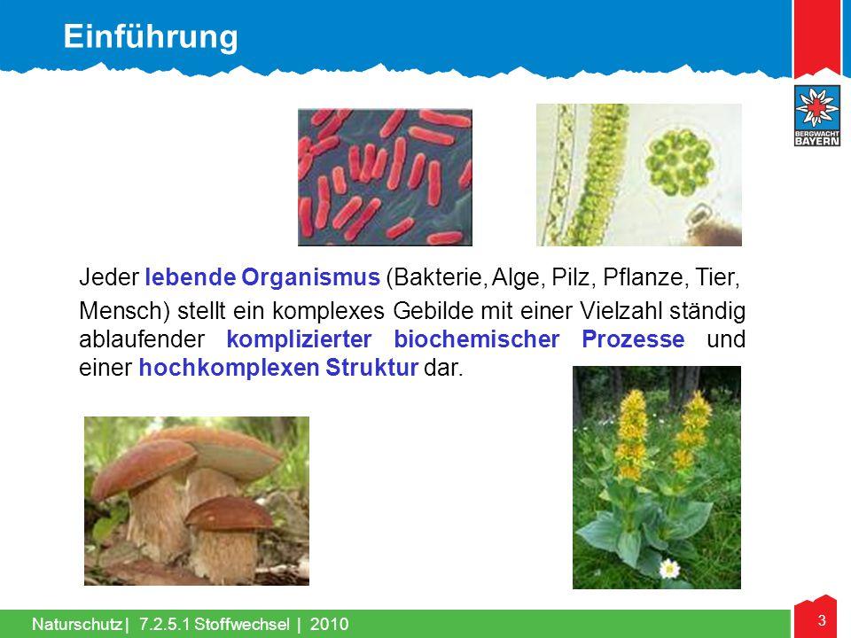 3 Naturschutz |7.2.5.1 Stoffwechsel | 2010 Jeder lebende Organismus (Bakterie, Alge, Pilz, Pflanze, Tier, Mensch) stellt ein komplexes Gebilde mit ein