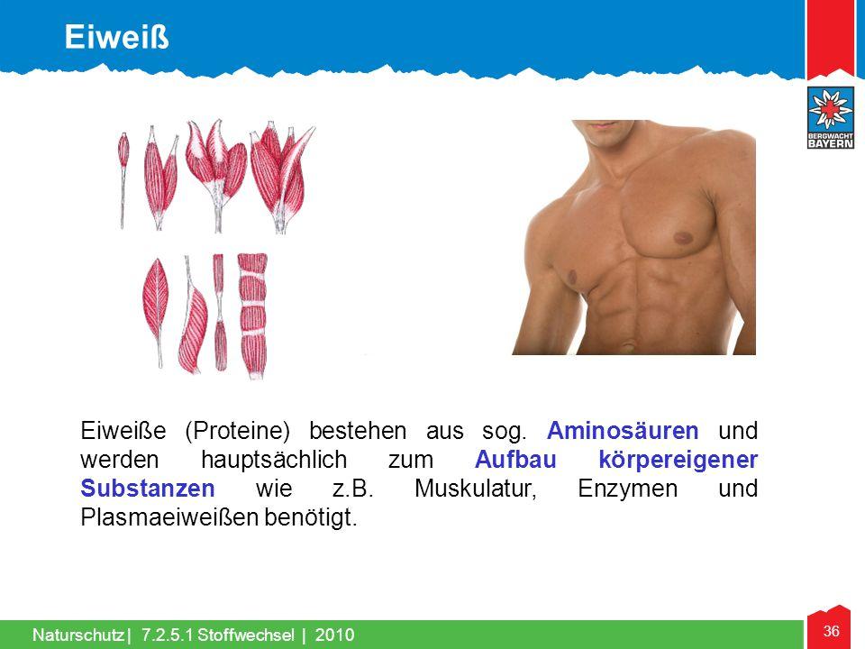 36 Naturschutz |7.2.5.1 Stoffwechsel | 2010 Eiweiße (Proteine) bestehen aus sog. Aminosäuren und werden hauptsächlich zum Aufbau körpereigener Substan