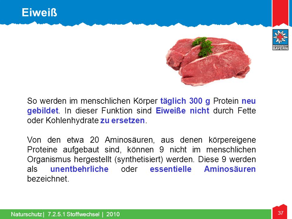 37 Naturschutz |7.2.5.1 Stoffwechsel | 2010 So werden im menschlichen Körper täglich 300 g Protein neu gebildet. In dieser Funktion sind Eiweiße nicht