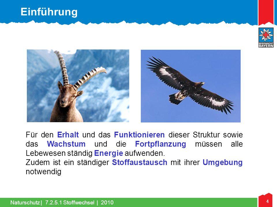 4 Naturschutz |7.2.5.1 Stoffwechsel | 2010 Für den Erhalt und das Funktionieren dieser Struktur sowie das Wachstum und die Fortpflanzung müssen alle L