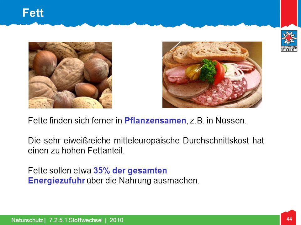 44 Naturschutz |7.2.5.1 Stoffwechsel | 2010 Fette finden sich ferner in Pflanzensamen, z.B. in Nüssen. Die sehr eiweißreiche mitteleuropäische Durchsc