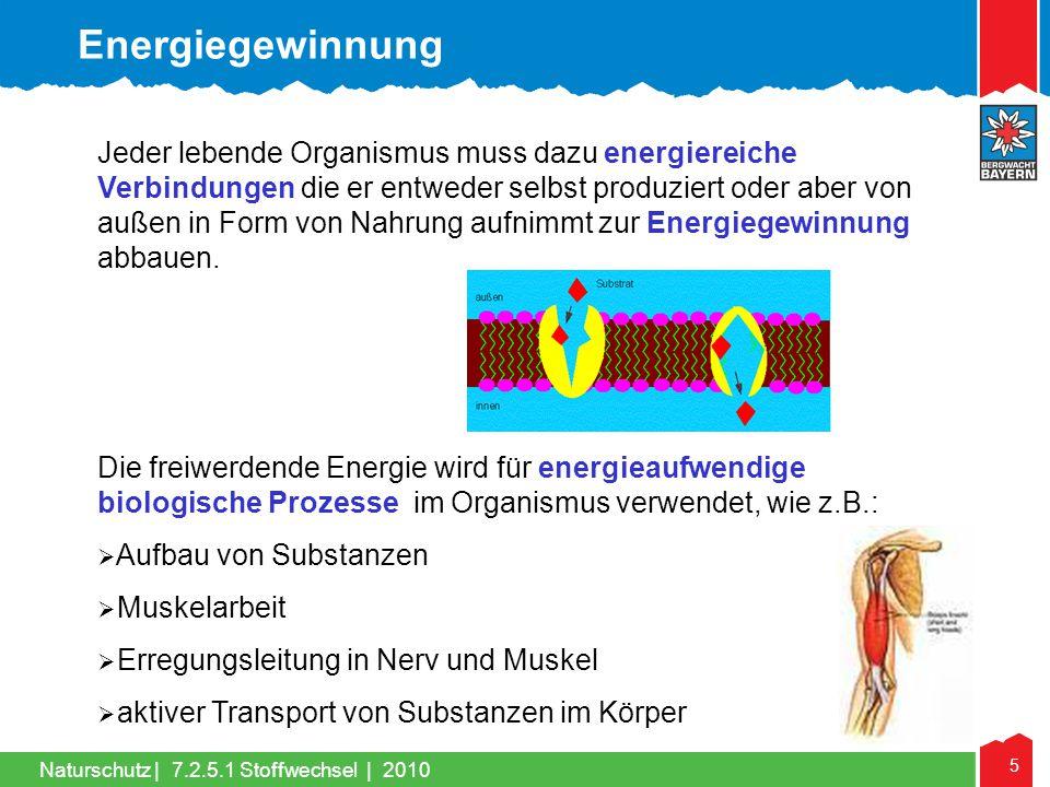 5 Naturschutz |7.2.5.1 Stoffwechsel | 2010 Jeder lebende Organismus muss dazu energiereiche Verbindungen die er entweder selbst produziert oder aber v