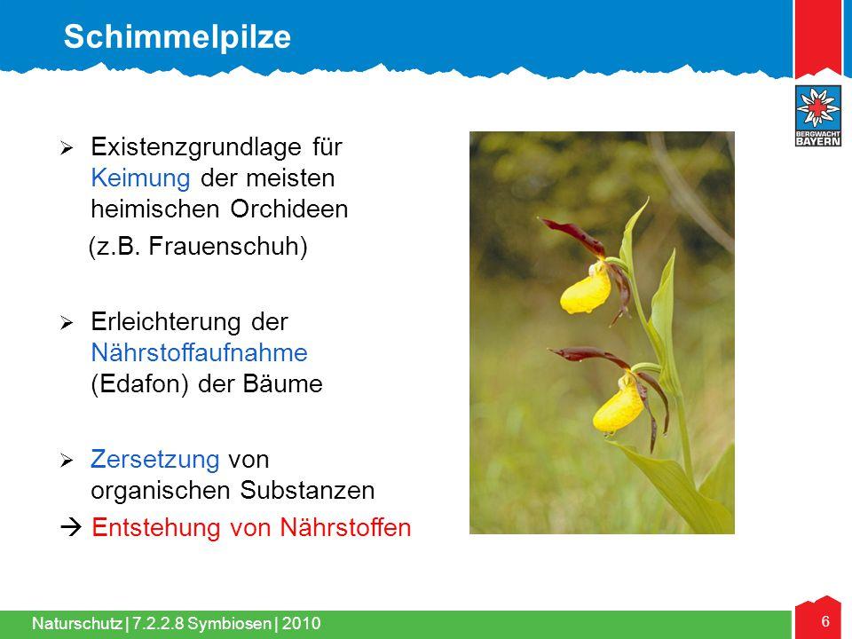Naturschutz | 6 7.2.2.8 Symbiosen | 2010  Existenzgrundlage für Keimung der meisten heimischen Orchideen (z.B. Frauenschuh)  Erleichterung der Nährs