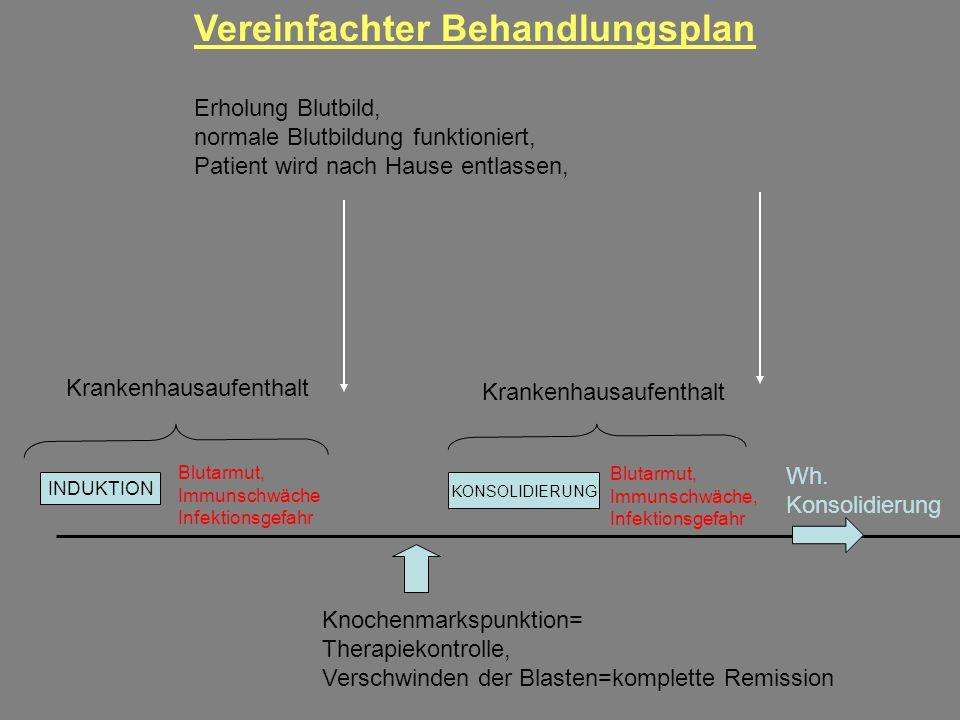 INDUKTION Krankenhausaufenthalt Blutarmut, Immunschwäche Infektionsgefahr Knochenmarkspunktion= Therapiekontrolle, Verschwinden der Blasten=komplette