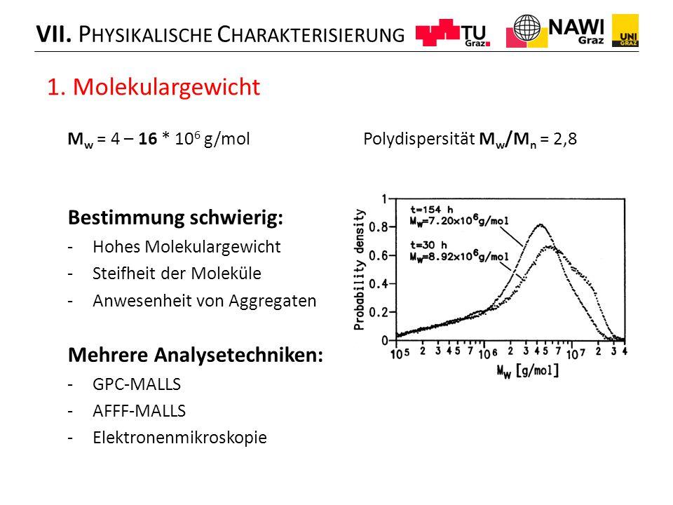 M w = 4 – 16 * 10 6 g/mol Polydispersität M w /M n = 2,8 Bestimmung schwierig: -Hohes Molekulargewicht -Steifheit der Moleküle -Anwesenheit von Aggregaten Mehrere Analysetechniken: -GPC-MALLS -AFFF-MALLS -Elektronenmikroskopie VII.