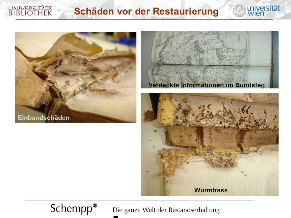 Einbandschäden Schäden vor der Restaurierung Verdeckte Informationen im Bundsteg Einbandschäden Wurmfrass