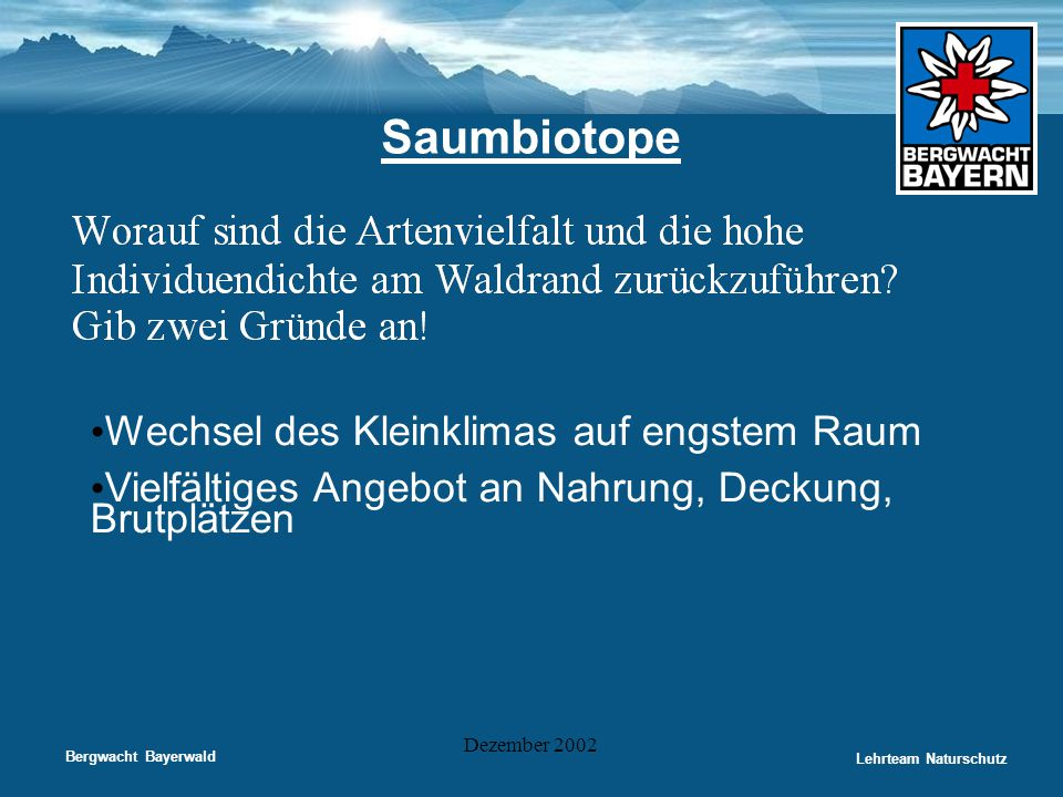 Bergwacht Bayerwald Lehrteam Naturschutz Dezember 2002 Saumbiotope • Wechsel des Kleinklimas auf engstem Raum • Vielfältiges Angebot an Nahrung, Decku