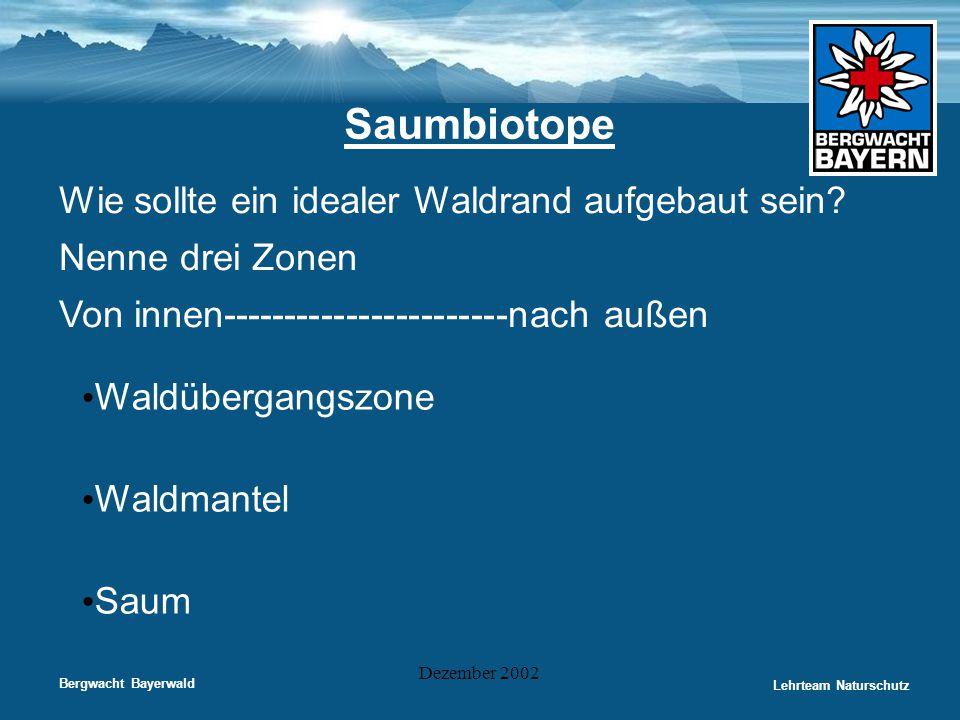 Bergwacht Bayerwald Lehrteam Naturschutz Dezember 2002 Saumbiotope Wie sollte ein idealer Waldrand aufgebaut sein? Nenne drei Zonen Von innen---------