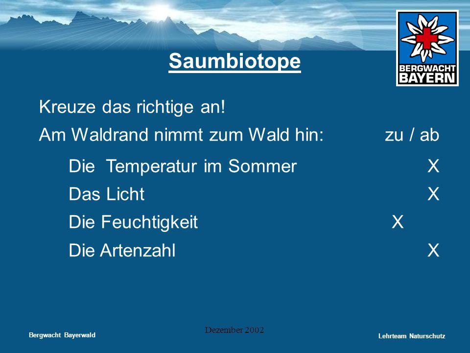 Bergwacht Bayerwald Lehrteam Naturschutz Dezember 2002 Saumbiotope Kreuze das richtige an! Am Waldrand nimmt zum Wald hin: zu / ab Die Temperatur im S