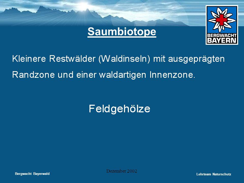 Bergwacht Bayerwald Lehrteam Naturschutz Dezember 2002 Saumbiotope