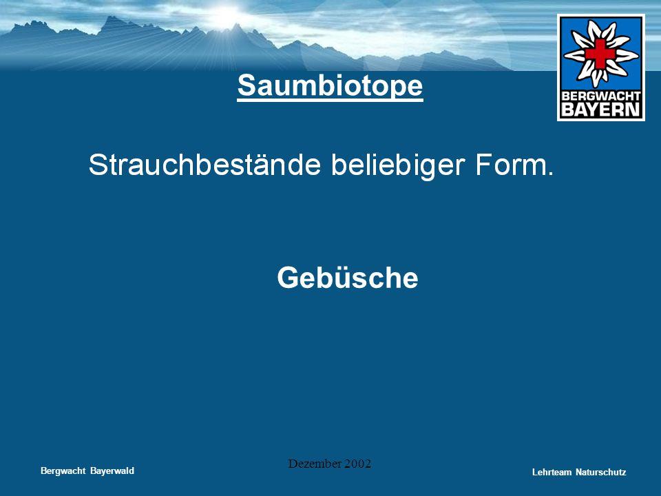 Bergwacht Bayerwald Lehrteam Naturschutz Dezember 2002 Saumbiotope Gebüsche