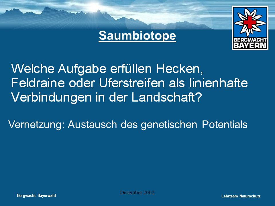 Bergwacht Bayerwald Lehrteam Naturschutz Dezember 2002 Saumbiotope Vernetzung: Austausch des genetischen Potentials